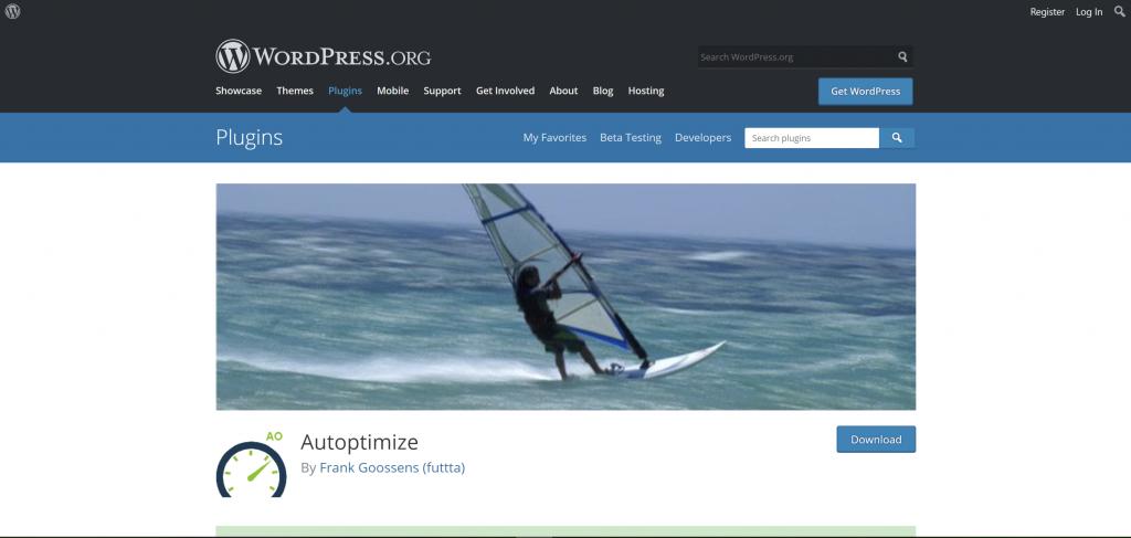 autoptimaze, blog, oktenweb, best plugins for wordpress
